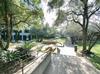 Arboretum Plaza