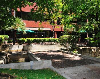 Relaxed and Affordable Office Space in Pleasant Hill